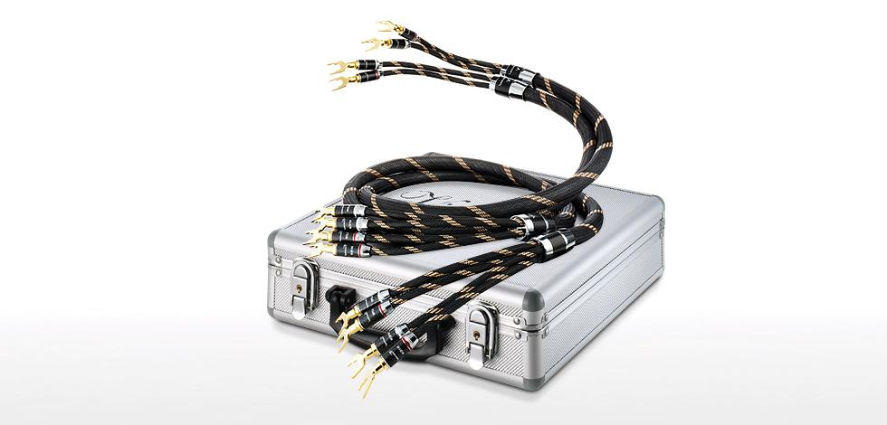Vincent: Bi-Wire-Cable